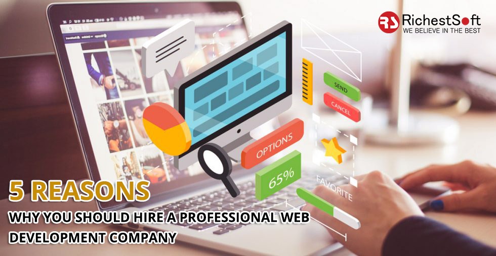 5 Reasons Why You Should Hire A Professional Web Development Company Insightful Blogs To Educate The Readers Richestsoft